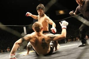 martial arts actors