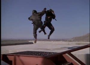 ninja fight on the roof